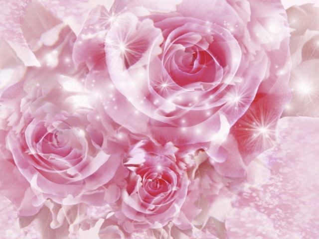 pink-magical-roses-picture.jpg